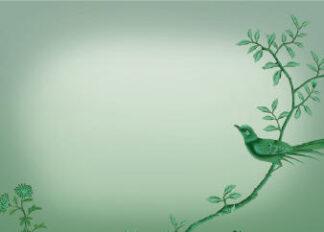 Jade Bird Place Setting Cards