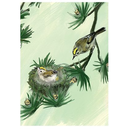 Goldcrest Card