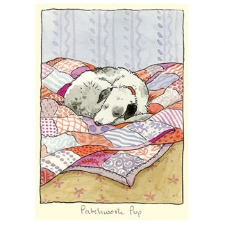 patchwork pup