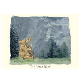 M323 The Great Bear by Anita Jeram