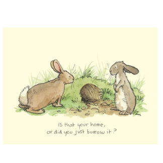 Burrow Rabbits Anita Jeram