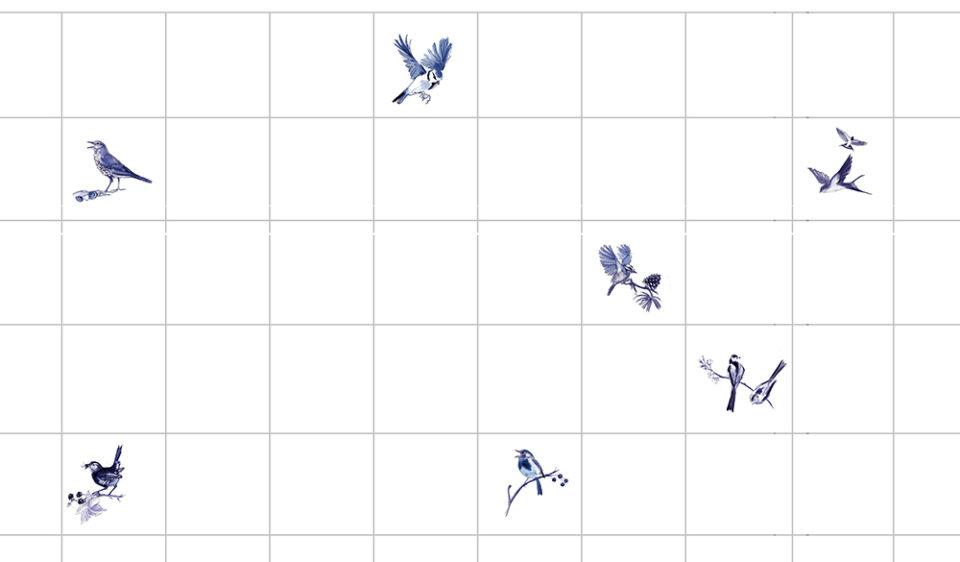 Garden Birds Splash Back by Julian Williams Artist