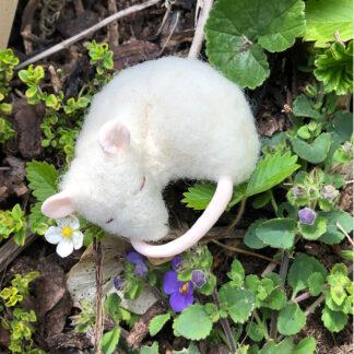 Sleeping mouse by Anita Jeram