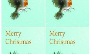 Merry Christmas Robin Insert